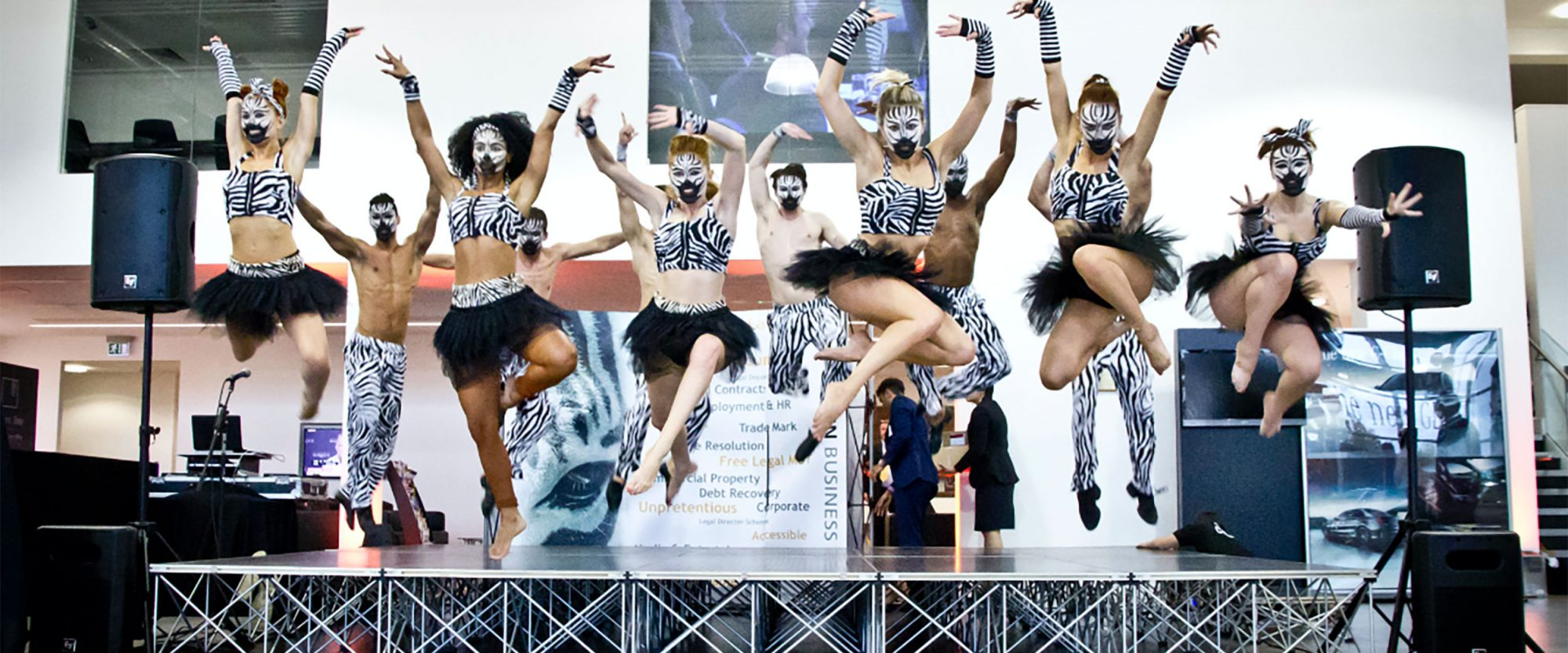 Zebra dancers